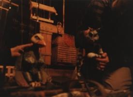04_hoene-og-kat