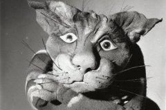 Katten MacKenzie